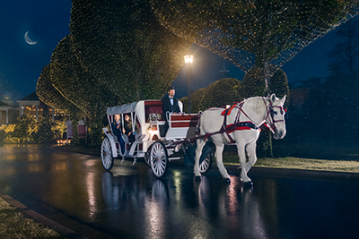 Experience a horse-drawn carriage ride and enjoy the decorations and lights!