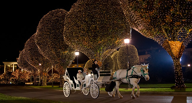 Experience Carriage Rides